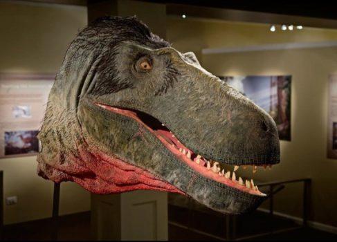 Kickstarter помогает палеонтологу «оживлять» динозавров