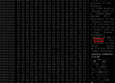 Фредерик Коэн продемонстрировал первый компьютерный вирус
