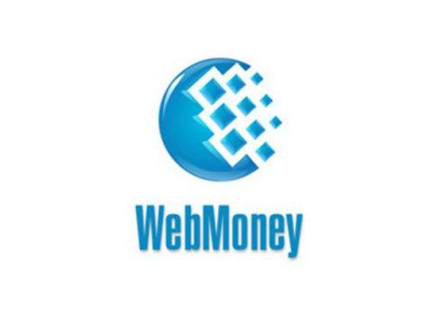 Опубликован пресс-релиз о запуске платежной системы WebMoney