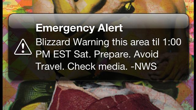 usa-sms-emergency-alert