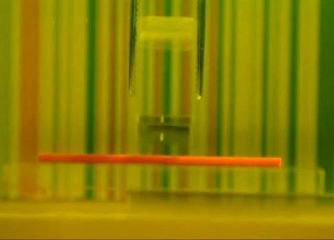 На TED-2013 продемонстрировали оптический камуфляж