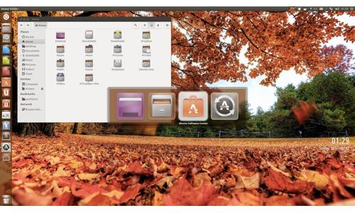 Ubuntu1304_2