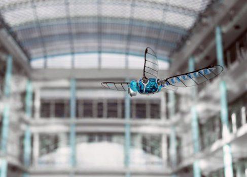 Компания Festo представила маневренного робота-стрекозу