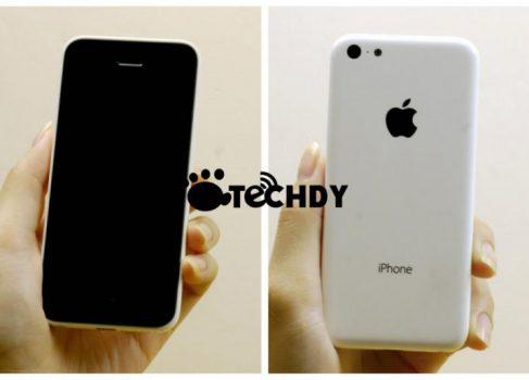 Появились новые фото бюджетного iPhone