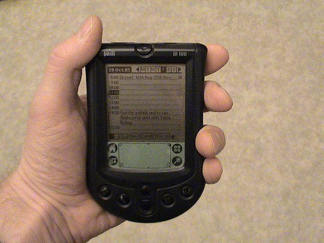 Palm_m100